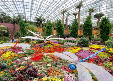 GARDENS BY THE BAY with SINGAPORE BOAT TOUR (Lunch included)